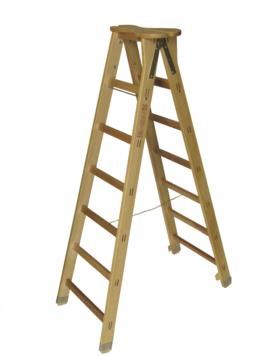 TREVIGIANA LADDER